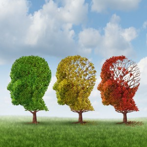 http://www.dreamstime.com/stock-images-brain-aging-memory-loss-due-to-dementia-alzheimer-disease-medical-icon-group-color-changing-autumn-fall-image31489814